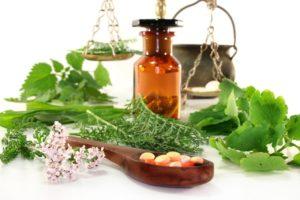 Benefits of Growing Veggie Gardens